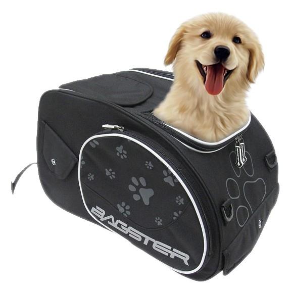 bagster-puppy_black-1-M-0822481-xlarge.jpg